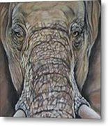 Echo Of The Elephants  Metal Print