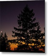 Eclipse In Yosemite Metal Print