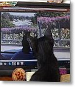 Eclipse Watching Herself On Computer Monitor Metal Print
