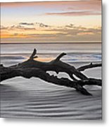 Ecstacy Metal Print by Debra and Dave Vanderlaan