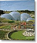 Eden Project 2002 Metal Print by David Davies