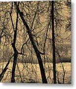 Edge Of Winter Metal Print