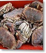 Edible Crabs  Metal Print