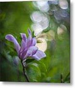 Effervescent Magnolia Metal Print