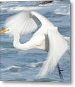 Egert In Flight Detail Metal Print