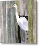Egret At John's Pass Metal Print