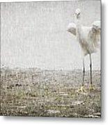 Egret In Rain Metal Print
