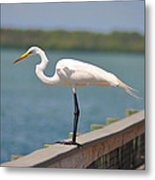 Egret On A Pier Metal Print