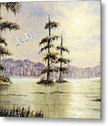 Egrets Over Wakulla Springs Metal Print
