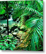 El Yunque Palm Trees And Waterfall Metal Print