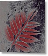 Elderberry Leaf Metal Print