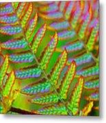 Electric Fern Metal Print