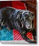 Electrostatic Dog And Blanket Metal Print
