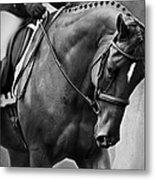 Elegance - Dressage Horse Metal Print