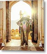 Elephant At Amber Palace Jaipur,india Metal Print