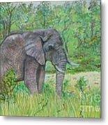 Elephant At Kruger Metal Print