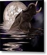 Elephant At Play Metal Print
