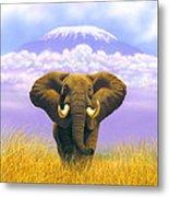 Elephant At Table Mountain Metal Print