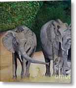 Elephant Family Gathering Metal Print