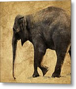 Elephant Walk II Metal Print