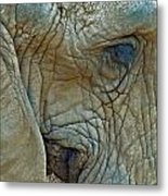 Elephant's Face Metal Print