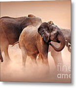 Elephants In Dust Metal Print