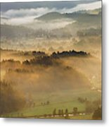 Elevated View Of Trees On Hill Metal Print