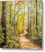 Elfin Forest Metal Print