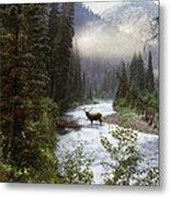 Elk Crossing Metal Print