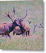 Elk On The Plains 3 Metal Print