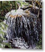 Ellen's Waterfall Metal Print