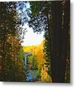 Elora Gorge Metal Print by Peter Jackson