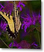 Elusive Butterfly Of Love Metal Print by Mamie Thornbrue