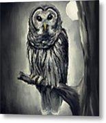 Elusive Owl Metal Print by Lourry Legarde