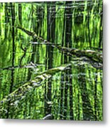 Emerald Reflections Metal Print
