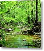 Emerald Creek Metal Print