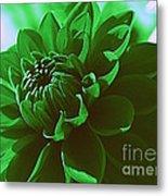 Emerald Green Beauty Metal Print
