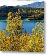Emerald Lake At Carcross Yukon Territory Canada Metal Print