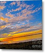 Emergence Metal Print by Q's House of Art ArtandFinePhotography