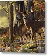 Eminence At The Forest Edge Metal Print