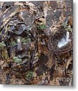 Empty Nest Always Welcome Metal Print