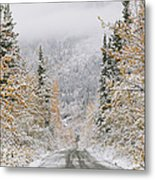 Empty Road Passing Through A Forest Metal Print