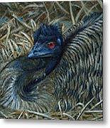 Emu Elegance Metal Print