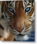 Enchanted Blue Eyes Metal Print