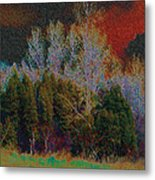 Enchanted Forest 10 Metal Print