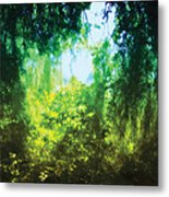Enchanted Forest 12 Metal Print