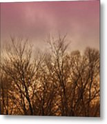 Enchanted Forest 9 Metal Print