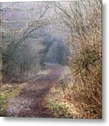 Enchanted Pathway Metal Print
