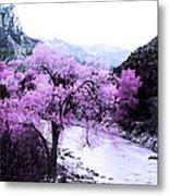 Enchanted Pink Metal Print