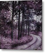 Enchanted Seney Path Metal Print